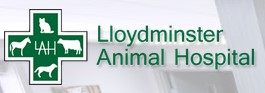 Lloydminster Animal Hospital Logo